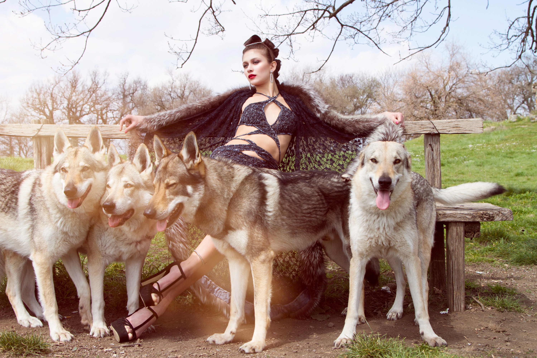 Fashion Wild